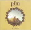 PFM - A GHOST (THE WORLD)